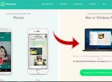 Cara Install dan menggunakan whatsapp di windows 10