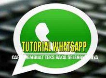 Tutorial cara membuat baca selengkapnya di whatsapp